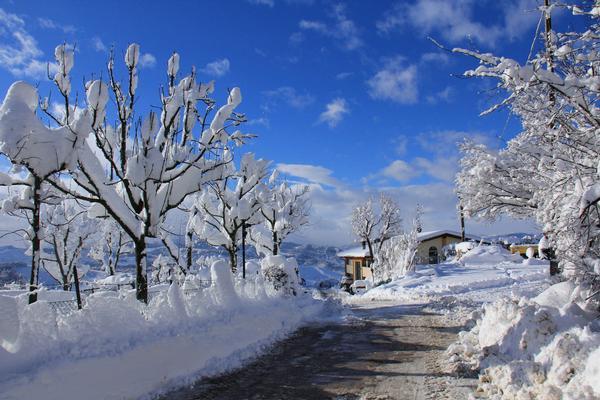 il fascino della neve alla Palazzina